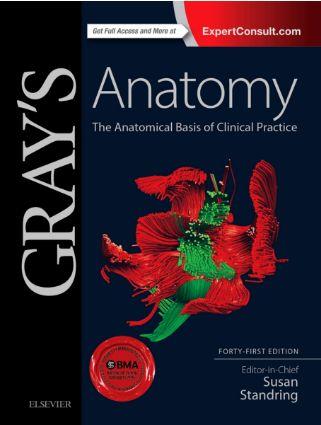 Grays Anatomy 41st Edition pdf Google Drive Download