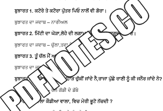 You are currently viewing Punjabi Bujartan with Answer PDF