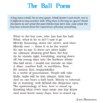 Read more about the article The Ball Poem PDF